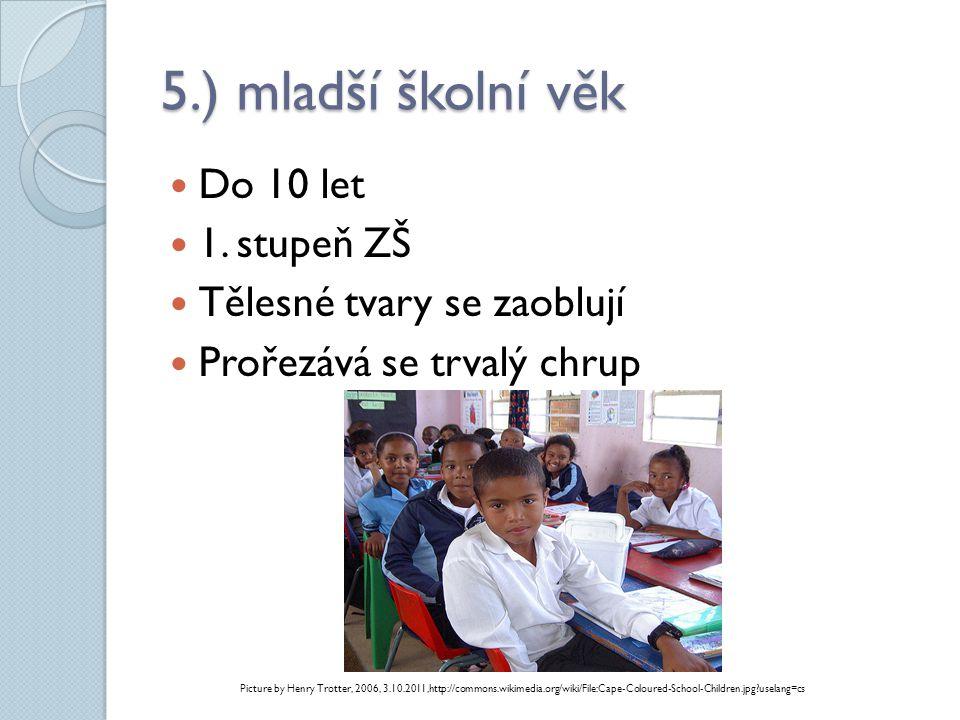 5.) mladší školní věk Do 10 let 1. stupeň ZŠ Tělesné tvary se zaoblují