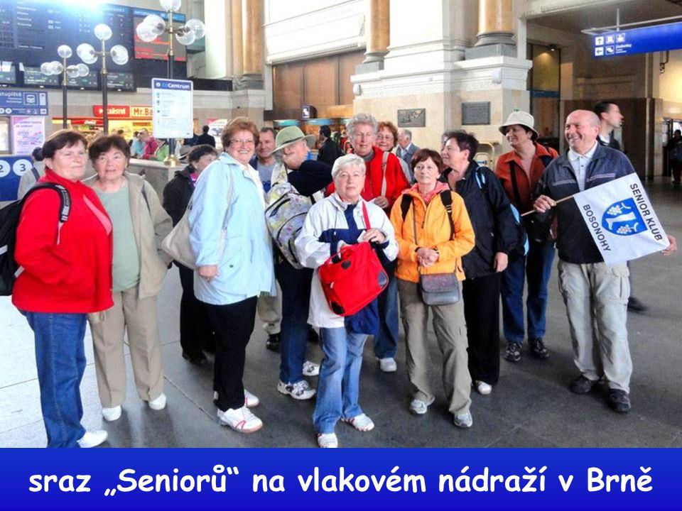 """sraz """"Seniorů na vlakovém nádraží v Brně"""