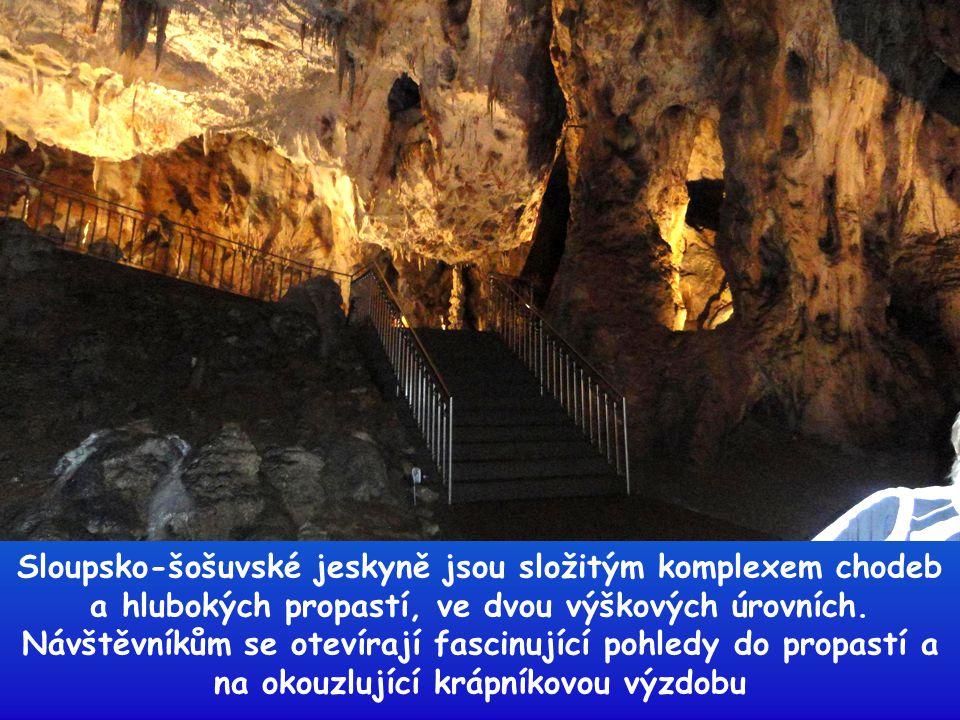 Sloupsko-šošuvské jeskyně jsou složitým komplexem chodeb a hlubokých propastí, ve dvou výškových úrovních.