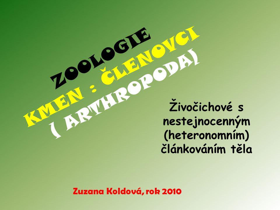 ZOOLOGIE KMEN : ČLENOVCI ( ARTHROPODA)