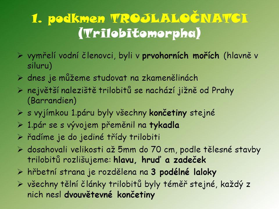 1. podkmen TROJLALOČNATCI (Trilobitomorpha)