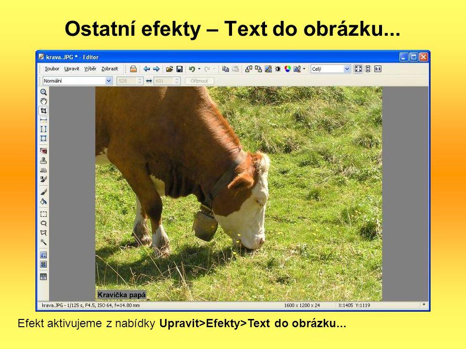 Ostatní efekty – Text do obrázku...
