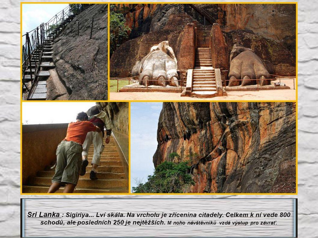 Sri Lanka : Sigiriya. Lví skála. Na vrcholu je zřícenina citadely