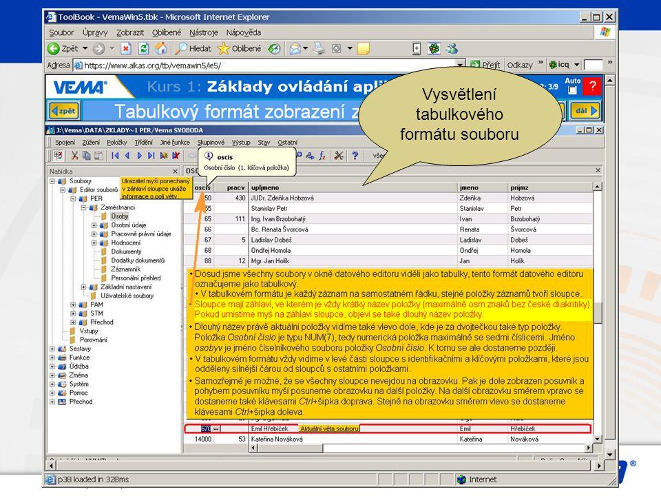 Vysvětlení tabulkového formátu souboru
