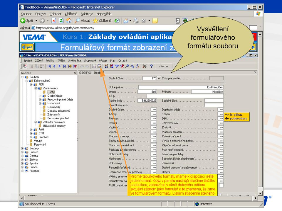 Vysvětlení formulářového formátu souboru