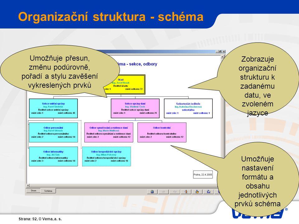 Organizační struktura - schéma