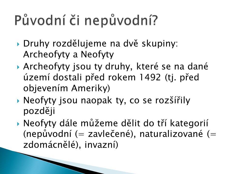 Původní či nepůvodní Druhy rozdělujeme na dvě skupiny: Archeofyty a Neofyty.