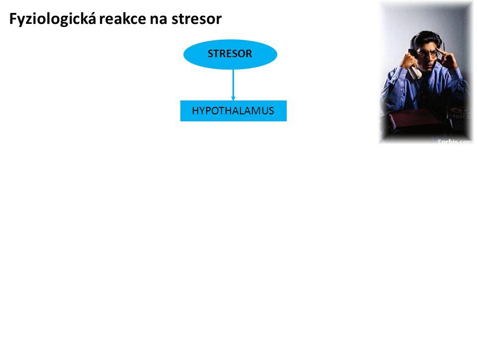 Fyziologická reakce na stresor
