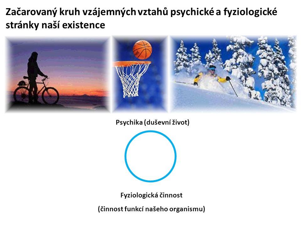 Psychika (duševní život) (činnost funkcí našeho organismu)