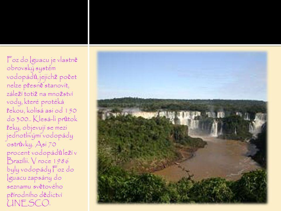 Foz do Iguacu je vlastně obrovský systém vodopádů, jejichž počet nelze přesně stanovit, záleží totiž na množství vody, které protéká řekou, kolísá asi od 150 do 300..