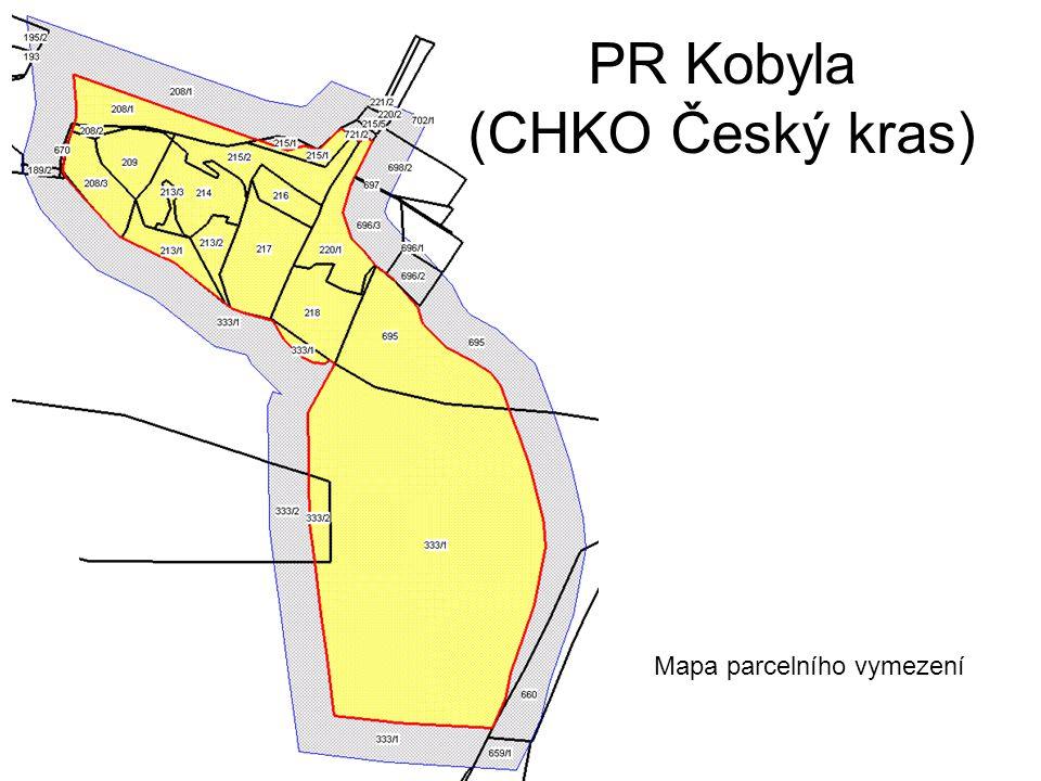 PR Kobyla (CHKO Český kras)