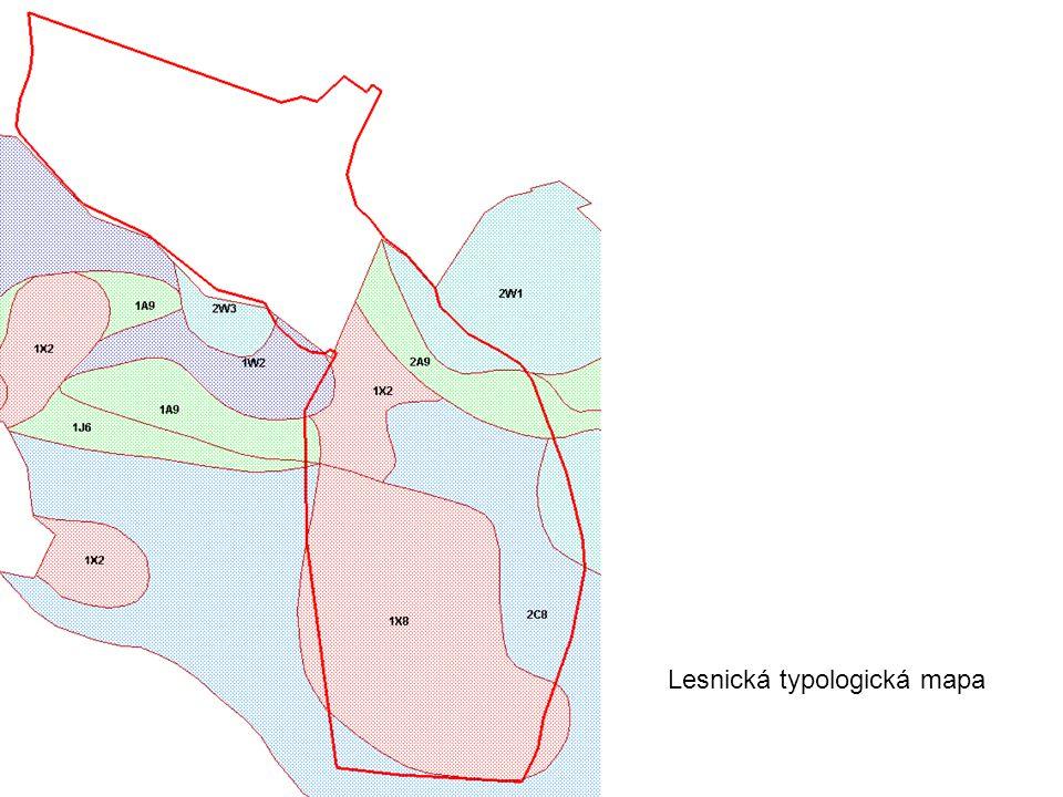 Lesnická typologická mapa