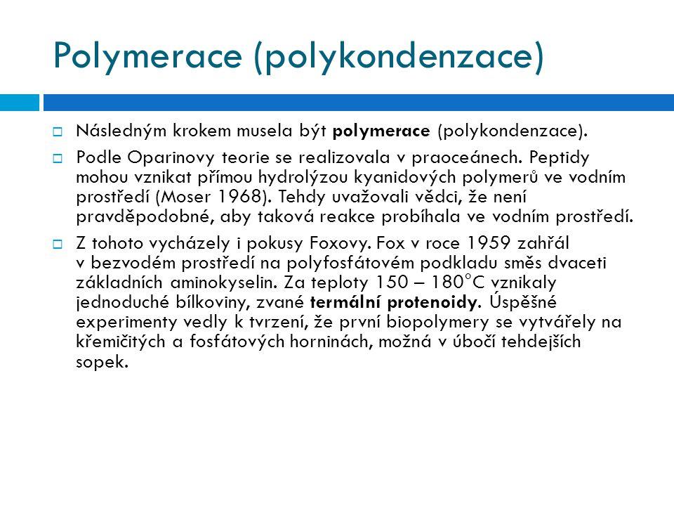 Polymerace (polykondenzace)