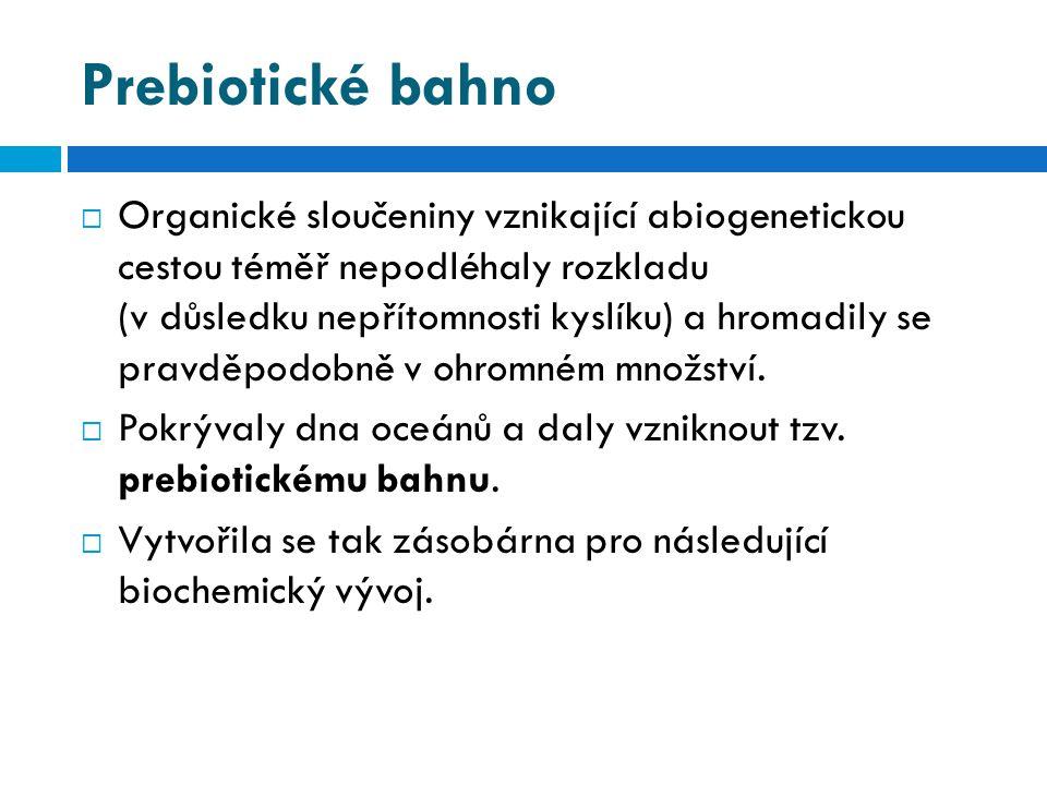 Prebiotické bahno