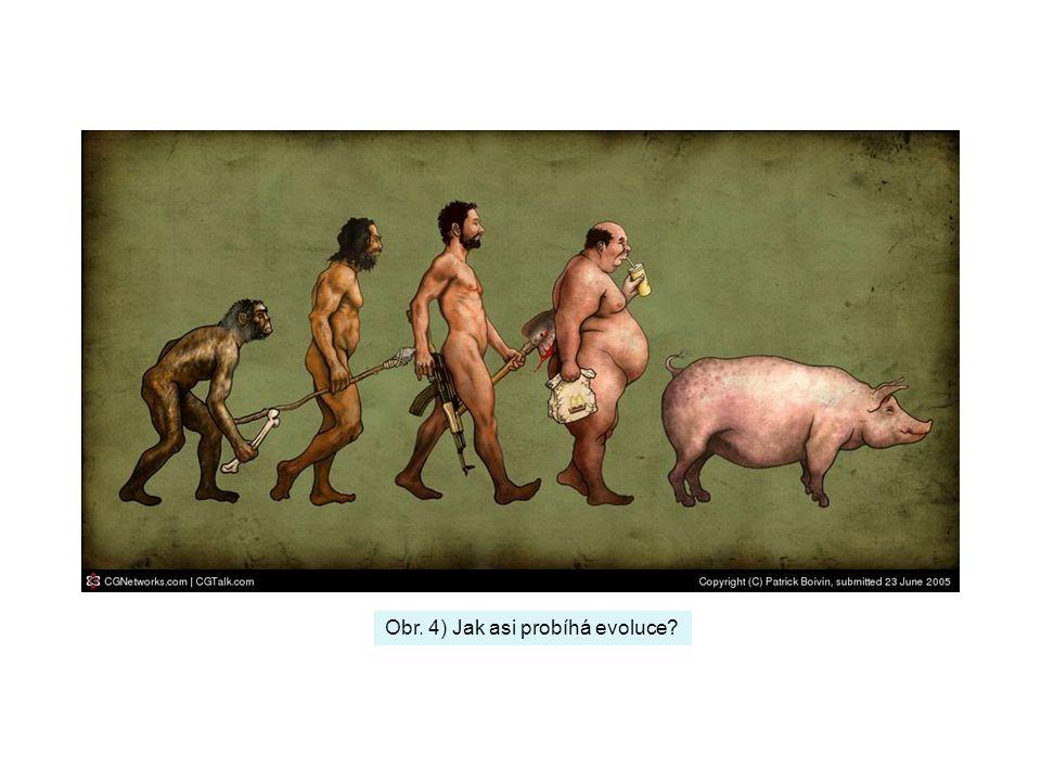 Obr. 4) Jak asi probíhá evoluce