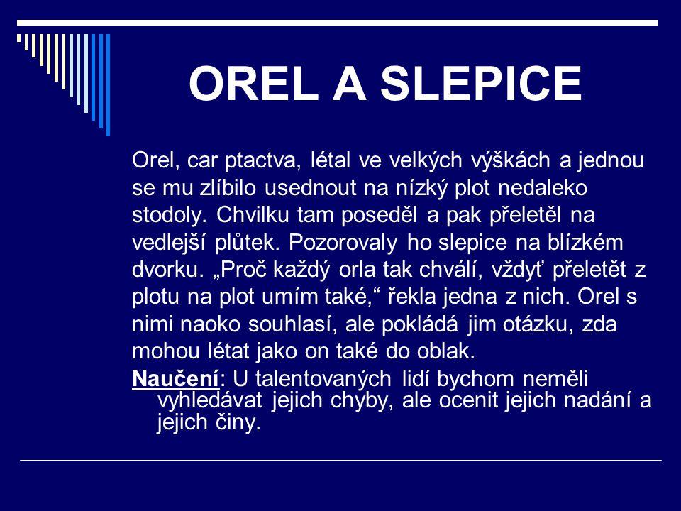 OREL A SLEPICE Orel, car ptactva, létal ve velkých výškách a jednou