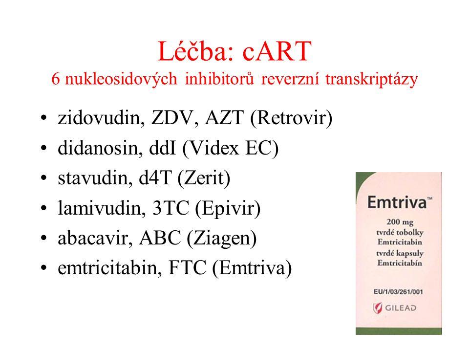 Léčba: cART 6 nukleosidových inhibitorů reverzní transkriptázy