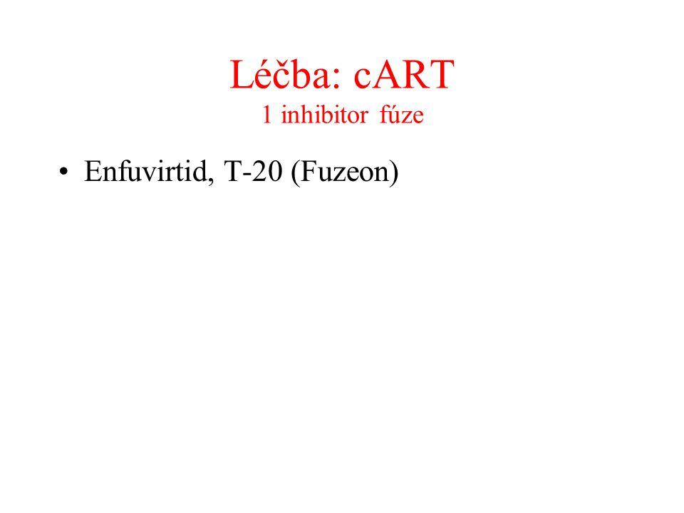 Léčba: cART 1 inhibitor fúze