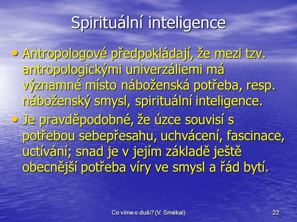 Spirituální inteligence