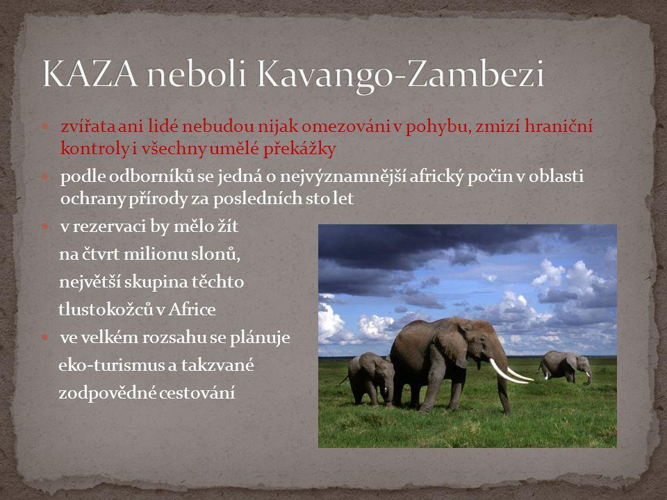 KAZA neboli Kavango-Zambezi