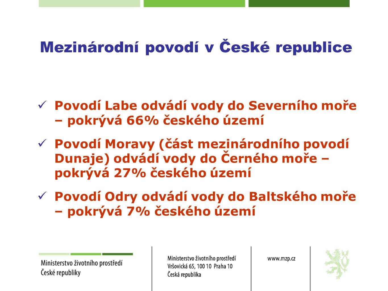Mezinárodní povodí v České republice