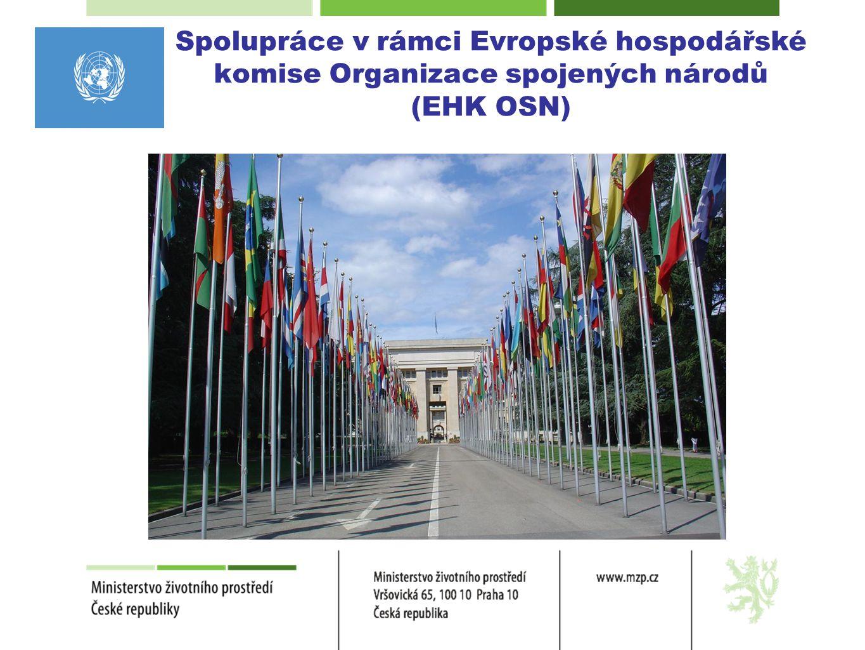 Spolupráce v rámci Evropské hospodářské komise Organizace spojených národů (EHK OSN)