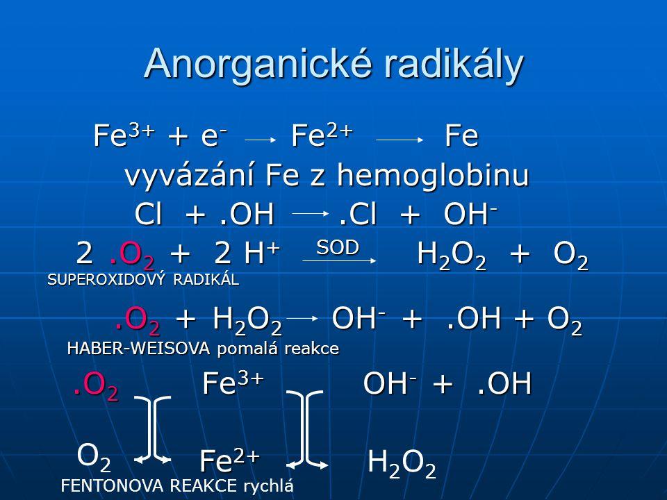 Anorganické radikály Fe3+ + e- Fe2+ Fe vyvázání Fe z hemoglobinu