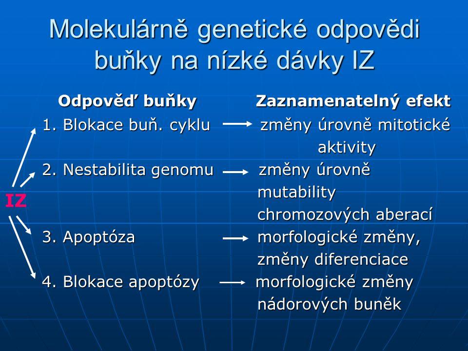 Molekulárně genetické odpovědi buňky na nízké dávky IZ