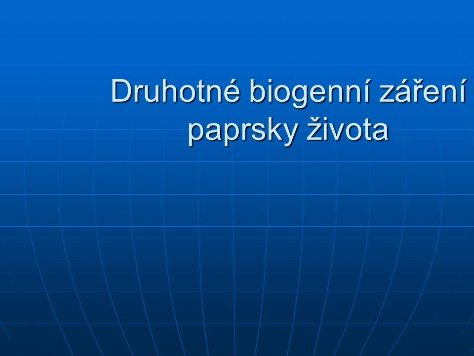 Druhotné biogenní záření paprsky života