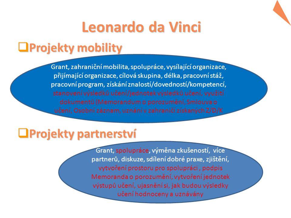 Leonardo da Vinci Projekty mobility Projekty partnerství