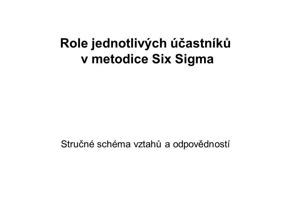 Role jednotlivých účastníků v metodice Six Sigma