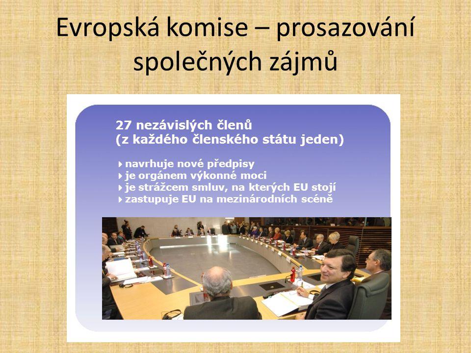 Evropská komise – prosazování společných zájmů