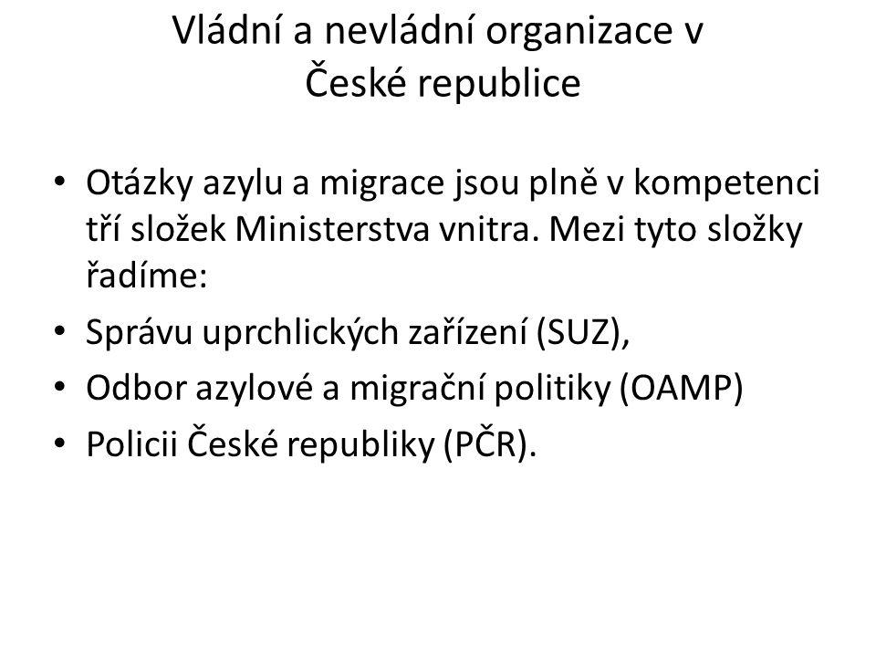 Vládní a nevládní organizace v České republice