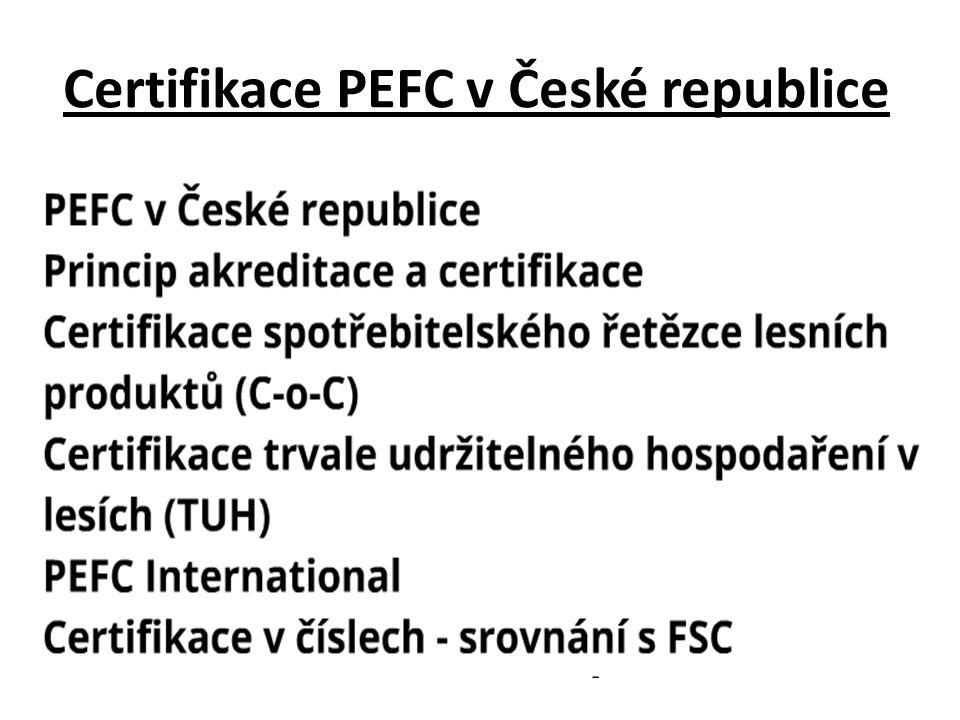 Certifikace PEFC v České republice