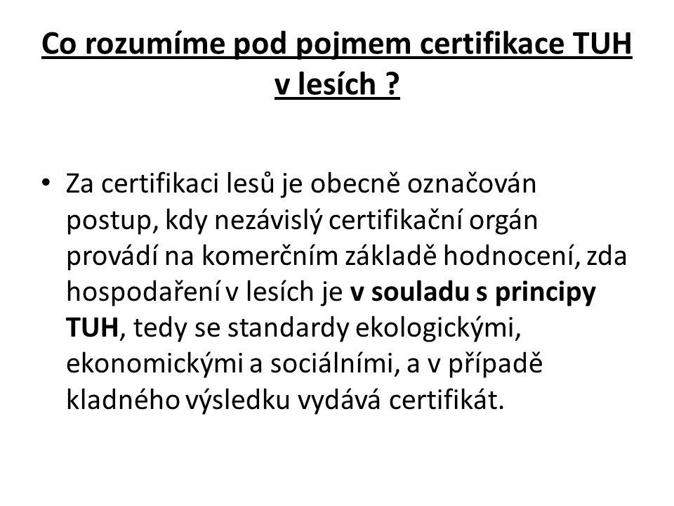 Co rozumíme pod pojmem certifikace TUH v lesích