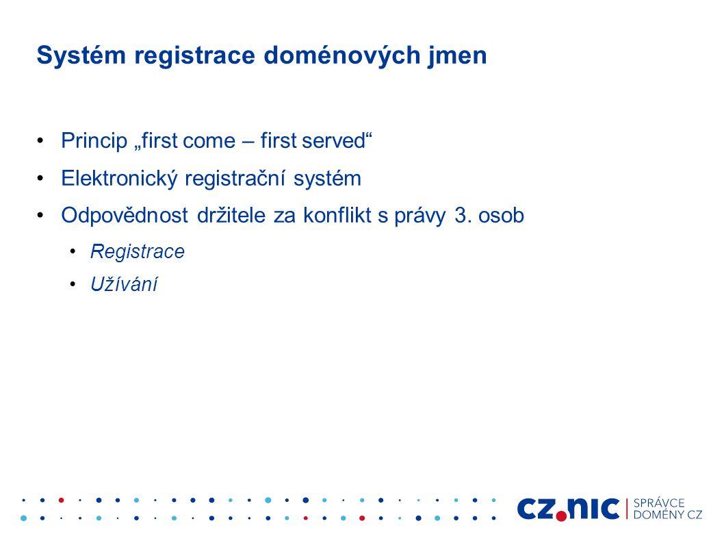 Systém registrace doménových jmen