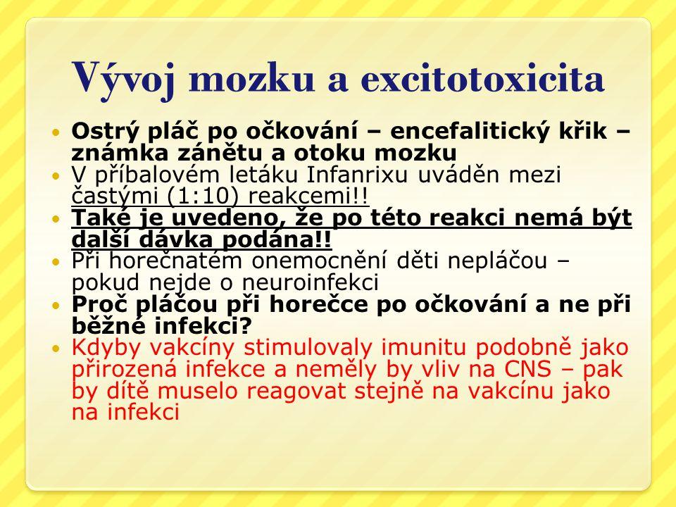 Vývoj mozku a excitotoxicita