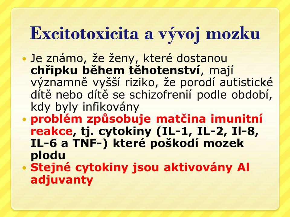 Excitotoxicita a vývoj mozku