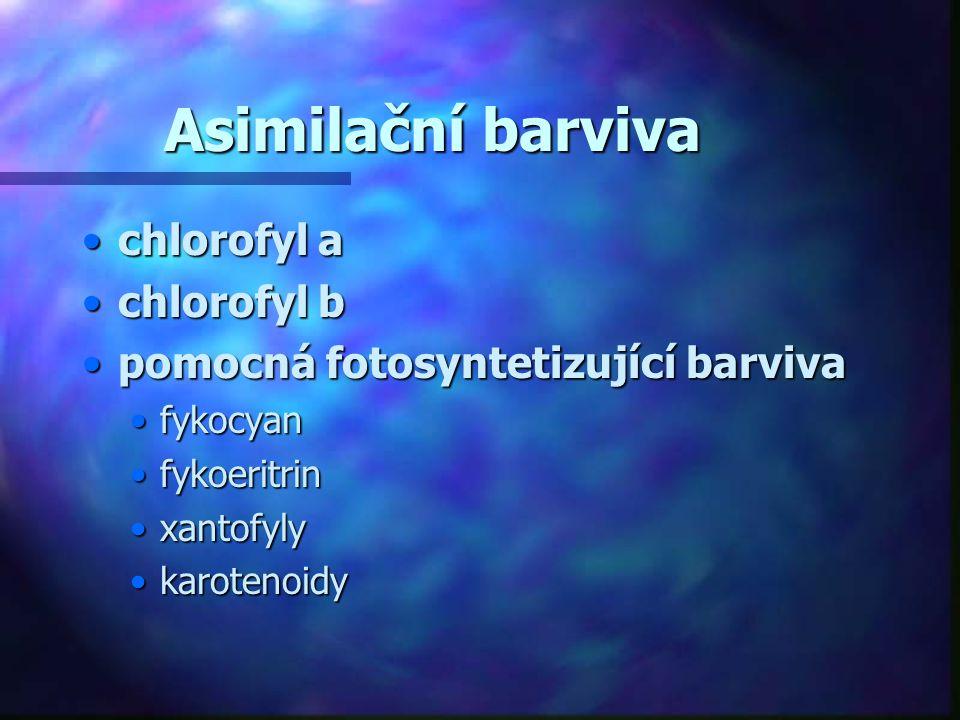 Asimilační barviva chlorofyl a chlorofyl b