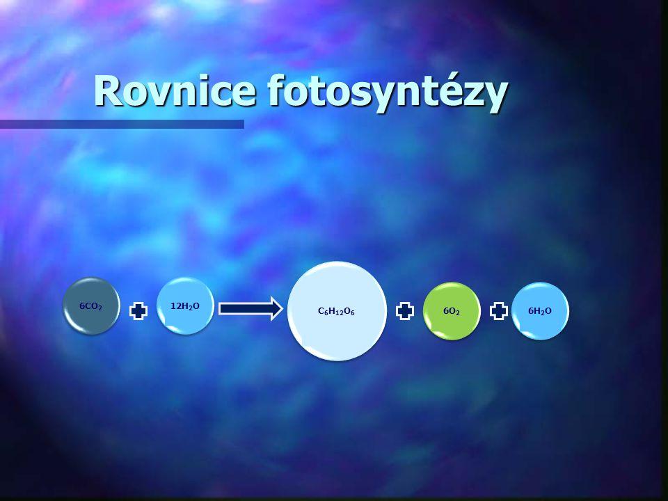 Rovnice fotosyntézy C6H12O6 6CO2 12H2O 6O2 6H2O