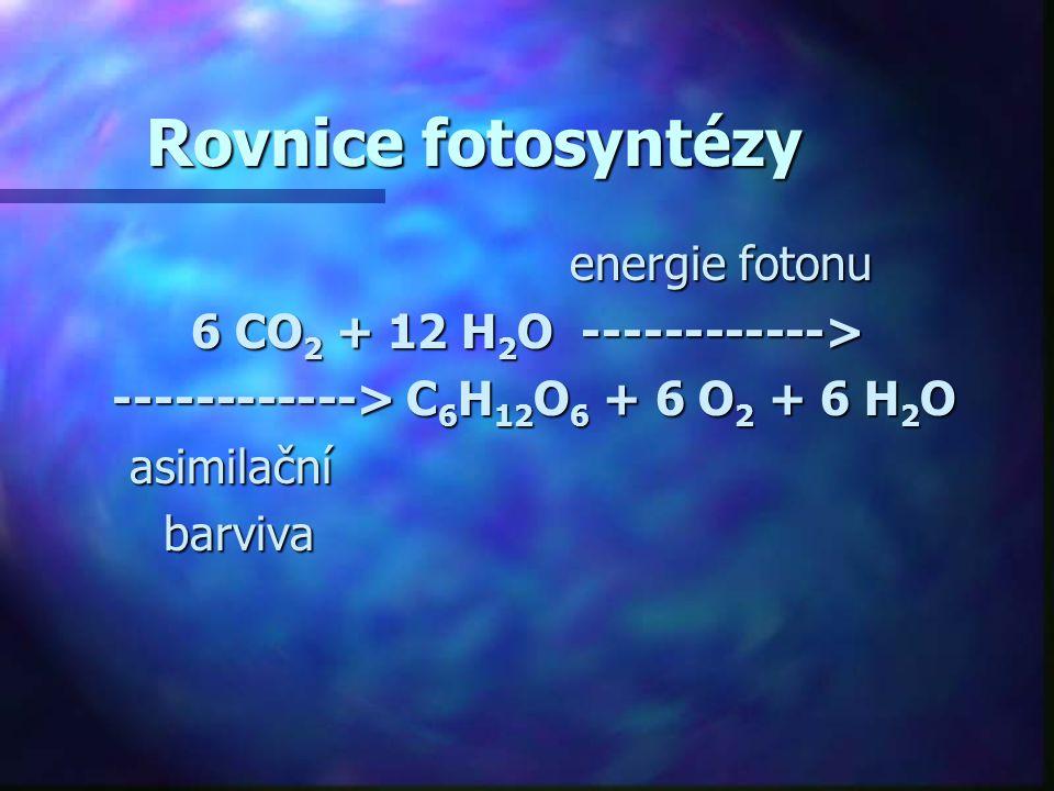 6 CO2 + 12 H2O ------------>