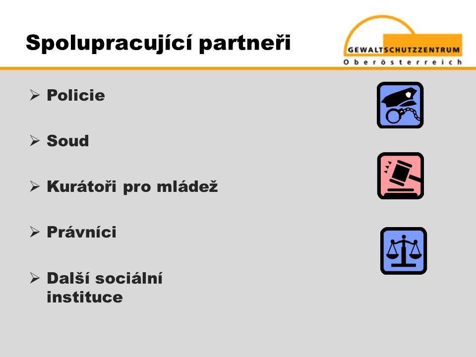 Spolupracující partneři