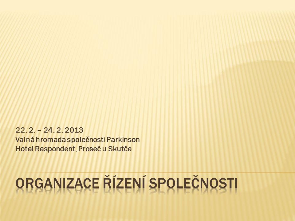 Organizace řízení společnosti