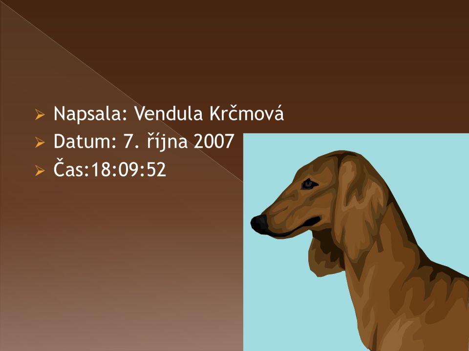 Napsala: Vendula Krčmová