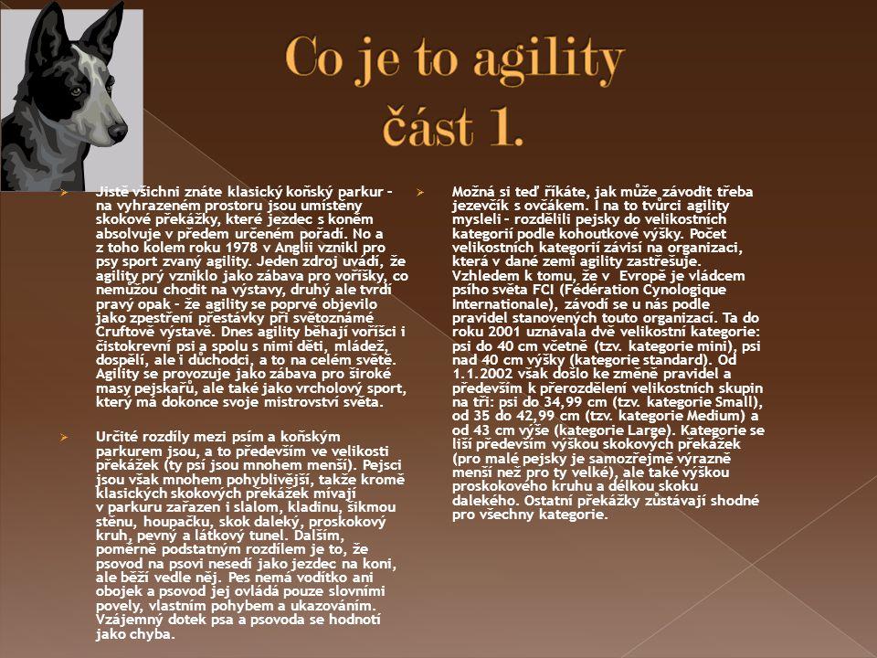 Co je to agility část 1.