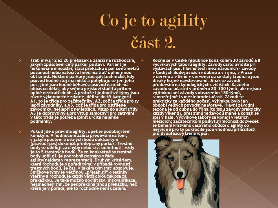 Co je to agility část 2.