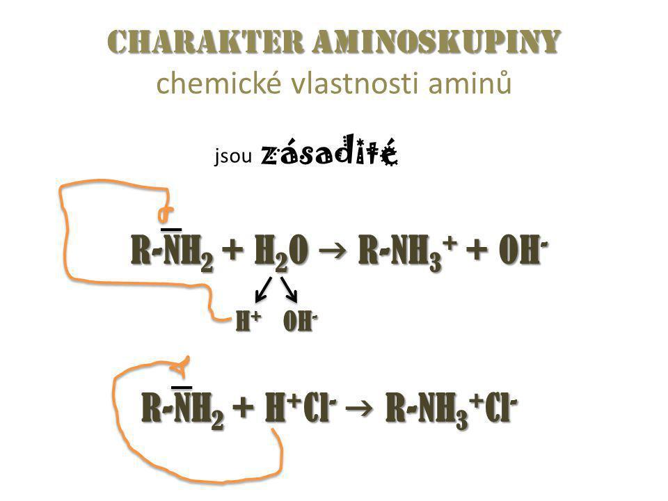 Charakter aminoskupiny chemické vlastnosti aminů