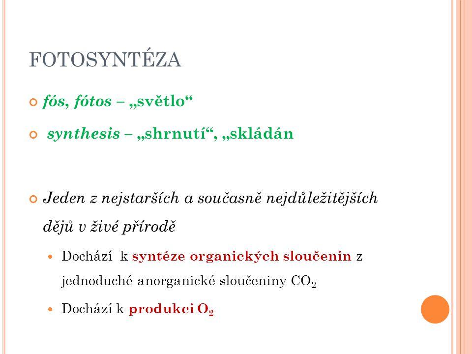 "FOTOSYNTÉZA fós, fótos – ""světlo synthesis – ""shrnutí , ""skládán"