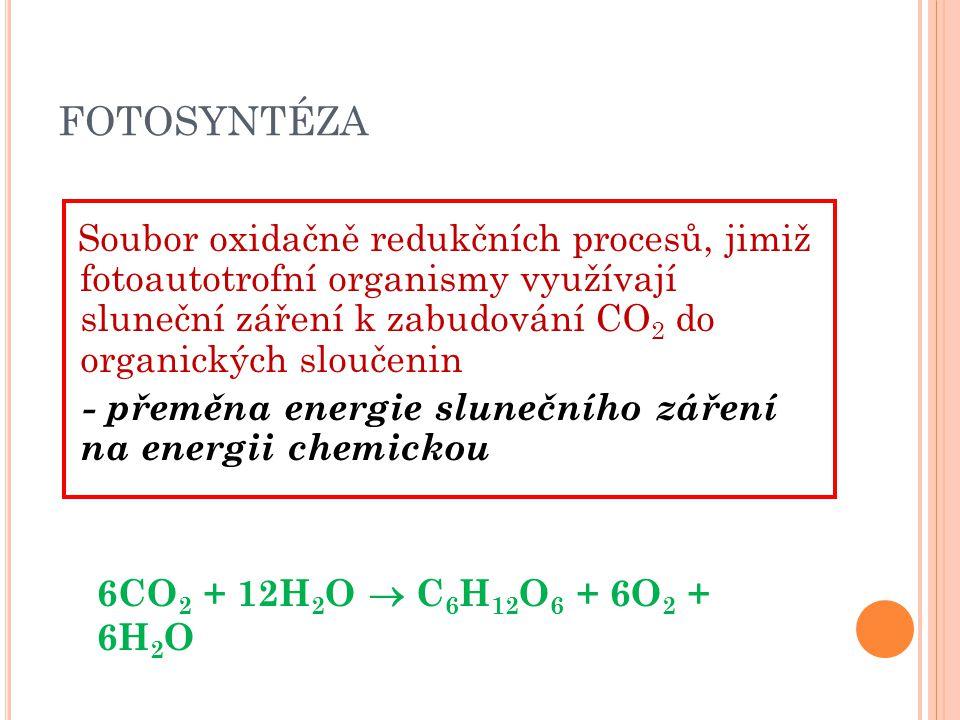 FOTOSYNTÉZA - přeměna energie slunečního záření na energii chemickou