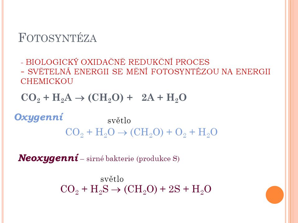 Fotosyntéza Oxygenní CO2 + H2O  (CH2O) + O2 + H2O